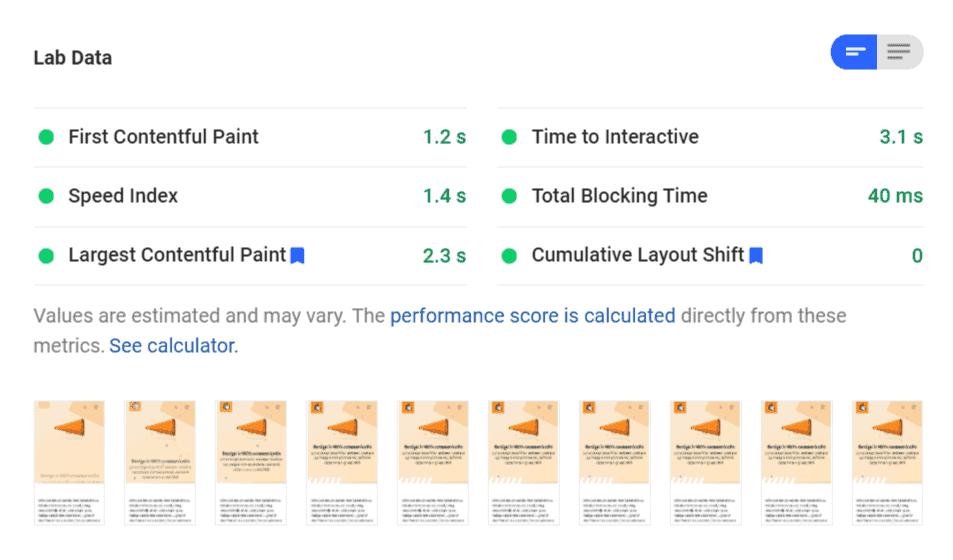 Google's PageSpeed Insights voor de homepage van gonzodesign.nl